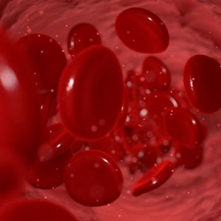 Young blood cocktail stops Alzheimer's decline, early clinical trial reports