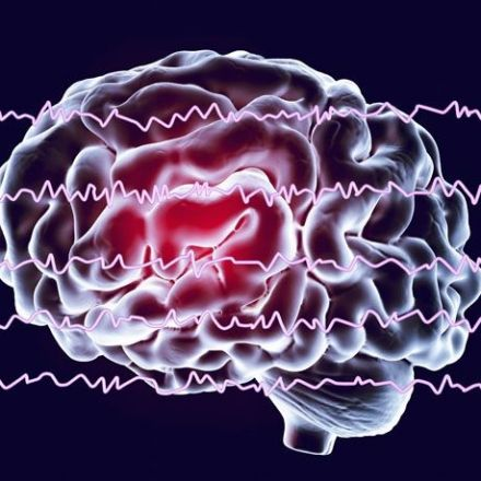 Brain activity study links social anxiety to a preoccupation with making errors