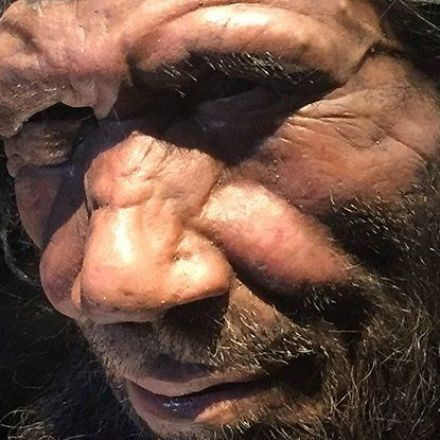 New DNA From a Neanderthal Bone Holds Evidence of a Lost Tribe of Humans