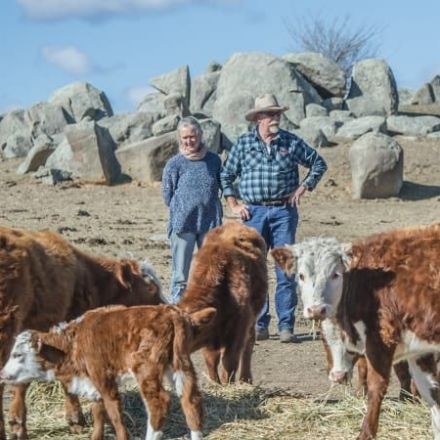 How far this [Strayan] farmer travels to keep his livestock alive