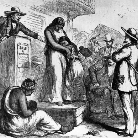 slavery and the use of slaves in the american south The southern argument for slavery a profound and killing economic impact in the south where reliance on slave labor was the defense of slavery in america.
