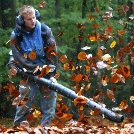Against Leaf Blowers