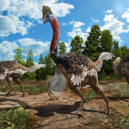 Newfound Dino Looks Like the Creepy Love Child of a Turkey and an Ostrich