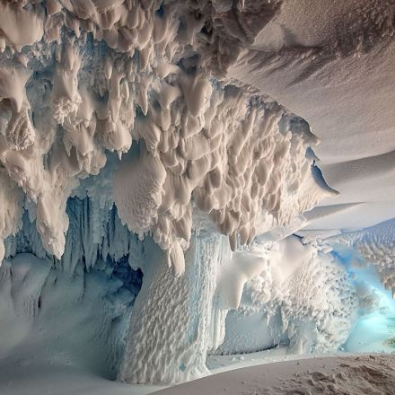Researchers find secret, warm oasis beneath Antarctica's ice that could be home to undiscovered species