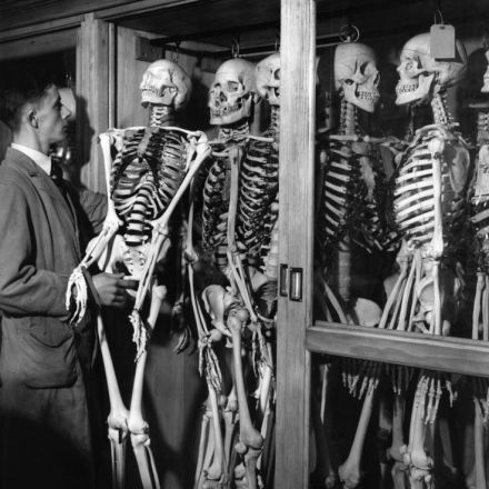 I Found Seven Skeletons in My Dining Room in 1874