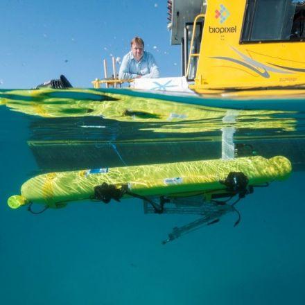New killer robot set to destroy pests on the Great Barrier Reef