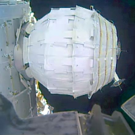 After six months in orbit, that space inflatable habitat is holding up well