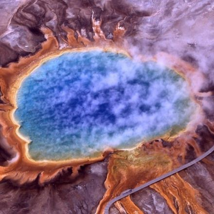 The 'Dark Matter' of the Microbial World
