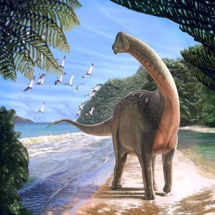 Fossil of school bus-sized dinosaur dug up in Egyptian desert