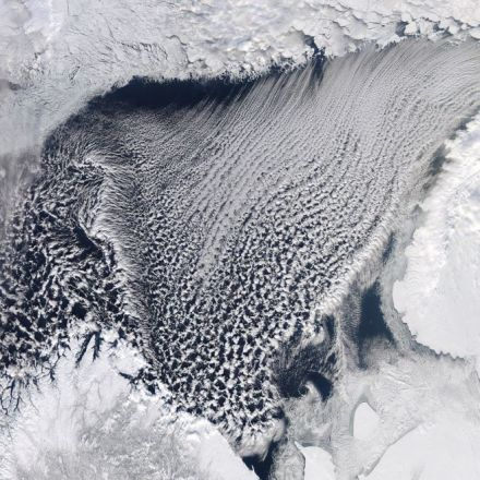 Barents Sea seems to have crossed a climate tipping point