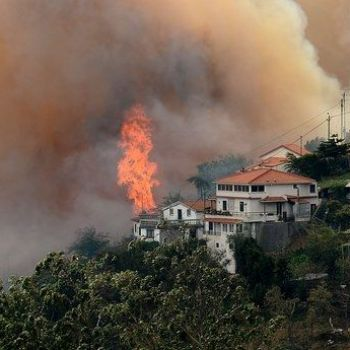 57 dead in focal Portugal rapidly spreading fires, many killed in cars - Top on News
