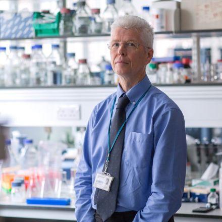 World experts call for Australia to act on devastating HTLV-1 virus