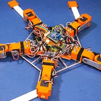 Brittle Stars inspire new generation robots able to adapt to physical damage