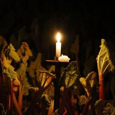 The English vegetable picked by candlelight