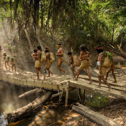 Isolated Nomads Are Under Siege in the Amazon Jungle