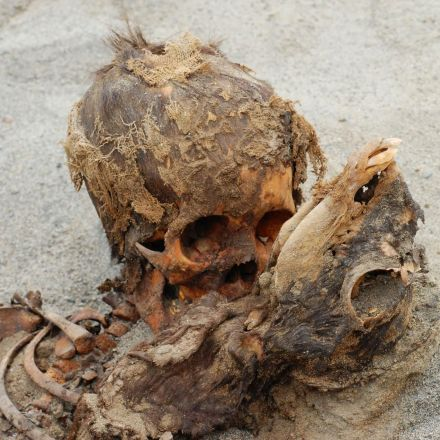 Exclusive: Ancient Mass Child Sacrifice May Be World's Largest