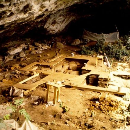 'Ghost' population of humans discovered in ancient Africa