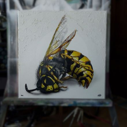 Dead Wasp by Martinus