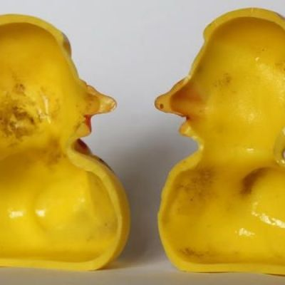 Rubber ducks may be haven for nasty germs