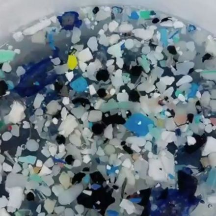 Newly Discovered Garbage Patch in the South Pacific Is 1.5 Times the Size of Texas, Study Says