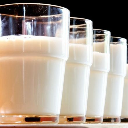 Scientists have found a big reason we should be drinking more whole milk