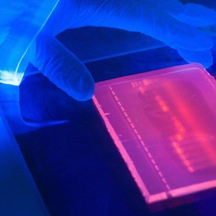 Next-generation sequencing ushers in a golden age of genetics