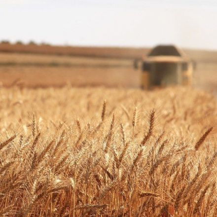 Agricultural genomics: Feeding a growing, hungry world