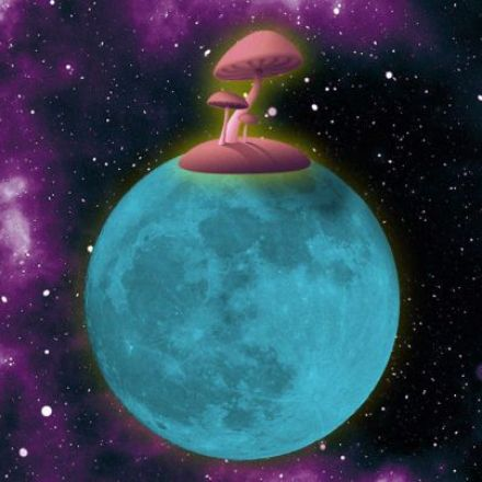 NASA wants to grow a Moon base out of mushrooms