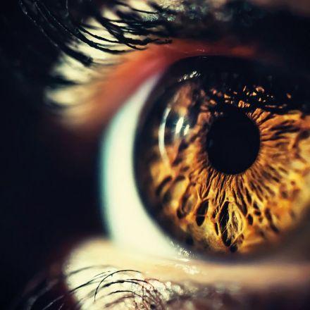 Blindness treatment will insert algae gene into people's eyes