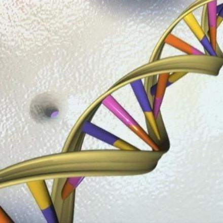 U.S. Proposes Effort to Analyze DNA From 1 Million People