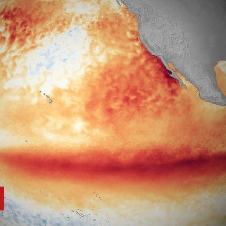 New El Niño Event likely this Winter