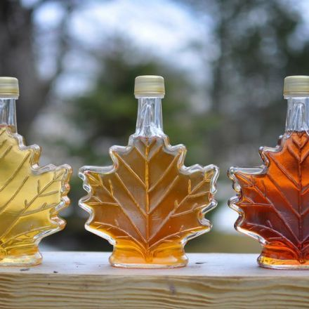 Maple syrup: Why the Real Stuff Makes all the Difference