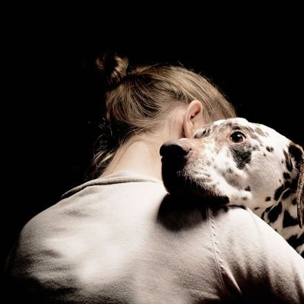 Dogs really can smell your fear, and then they get scared too
