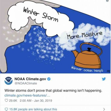 US government scientists debunk Trump's 'global waming' tweets with cartoon