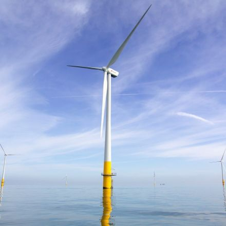 Huge boost for renewables as offshore windfarm costs fall to record low