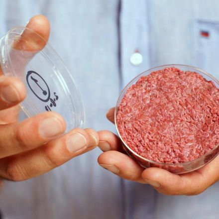 The future of food is farming cells, not cattle
