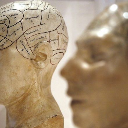 A New Theory Explains How Consciousness Evolved