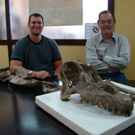 Paleontologists Just Unearthed the Skull of a HUGE Newly Discovered Dinosaur