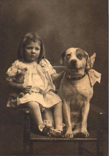 "Pit Bulls were once known as ""nanny dogs"" because of how ..."