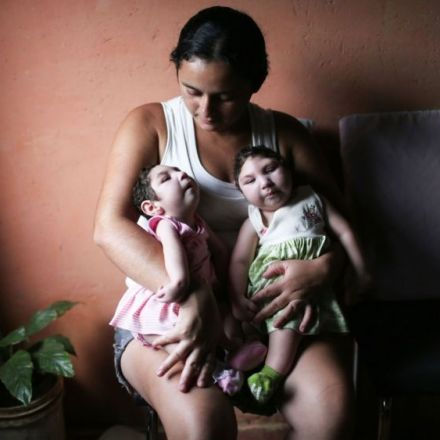 Scientists develop plant-based Zika vaccine