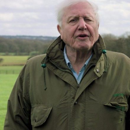 Attenborough fears climate 'catastrophe'