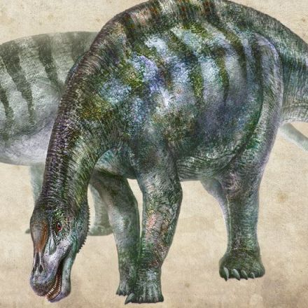'Amazing Dragon' Discovery in China Reshapes History of Dinosaurs' Evolution