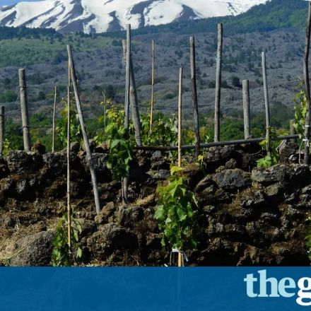 Traces of 6,000-year-old wine discovered in Sicilian cave