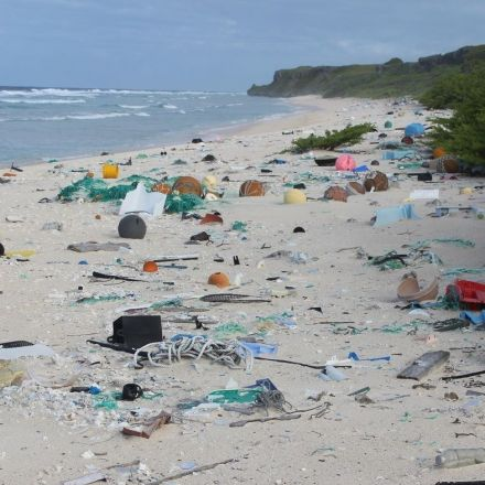 Millions Of Pieces Of Plastic Are Piling Up On An Otherwise Pristine Pacific Island