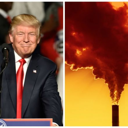 Get Ready for a Smoggier, Dirtier, Less Healthy America—Thanks to Trump's Foolhardy Evisceration of the EPA
