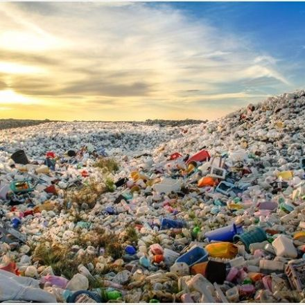 Plastics now commonly found in human stools