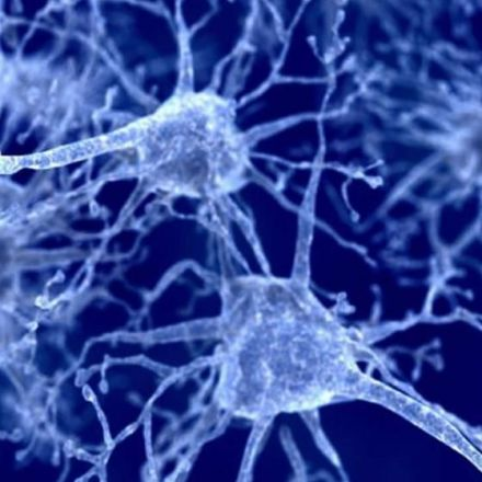 New mechanism behind Parkinson's disease revealed