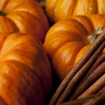 The rise and rise of pumpkin spice everything.