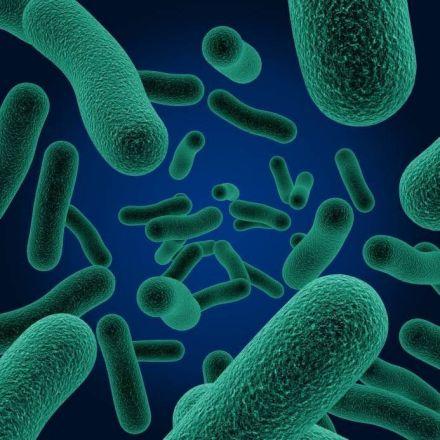 Antibiotic use tied to Crohn's, ulcerative colitis