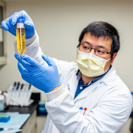 Ab8 COVID-19 Drug Breakthrough: Tiny Antibody Component Completely Neutralizes the SARS-CoV-2 Virus